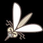 蚊の習性から部屋で対策すべきこと