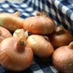新玉ねぎと玉ねぎの違い「新」とは何?旬な時期について