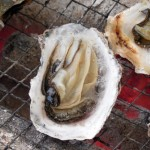 牡蠣があたるとノロウイルスに感染する!?その理由と症状、対処法について